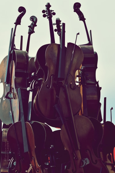 Violines en Saint Tropez